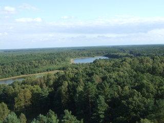 unberührte Natur - Deutschland, Landschaften, Natur, Nationalpark, Wald, See