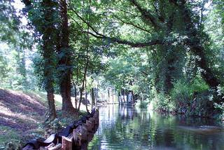 Spreewald Wasserkunst#1 - Spreewald, Wasser, Kunst