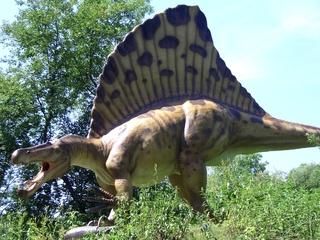 Dinosaurier 1 - Urzeit, Dinosaurier, Saurier, groß, ausgestorben, Urzeittier, Urzeittiere, gefährlich, Krallen