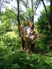 Dinosaurier 1 - Urzeit, Dinosaurier, Saurier, groß, ausgestorben, Urzeittier, Urzeittiere, gefährlich, Krallen, Stegosaurier