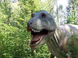 Dinosaurier 3 - Urzeit, Dinosaurier, Saurier, groß, ausgestorben, Urzeittier, Urzeittiere, gefährlich, Krallen, Tyrannus Saurus Rex, Tyrannosaurus, Gebiss, schwer
