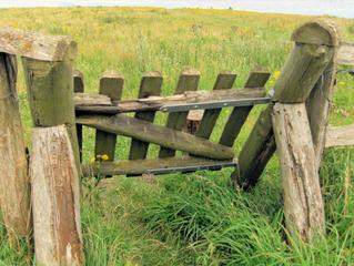 Schafgatter #2 - Tor, Schafgatter, Gatter, Tür, Weide, Deich, selbstständig, Holz, Schwerkraft, Neigung, Eigengewicht, Zaun