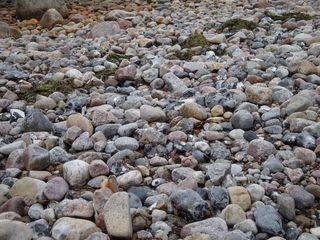 Ostseegestein#2 - Strand, Strandgut, Gestein, Steine