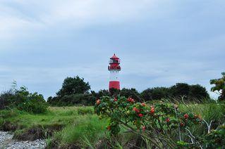 Leuchtturm Falshöft # 2 - Leuchtturm, Signal, Falshöft, Ostsee, Meer, Schifffahrt, rot, weiß, Schleswig-Holstein