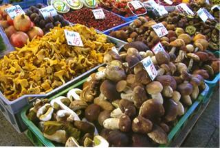 Pilze - Steinpilz, Pfifferling, Markt, Polen, Pilze