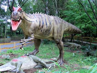 Dinosaurier in einem Dino-Park #10 - Allosaurus fragilis - Urzeit, Dinosaurier, Saurier, groß, ausgestorben, Urzeittier, Urzeittiere, gefährlich, Krallen, Echse, Evolution, Drache, Biologie, Dino, Fossil, Allosaurus fragilis, Fleischfresser, Jura, Zähne