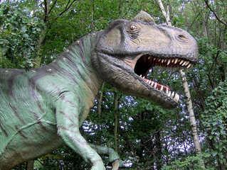 Dinosaurier in einem Dino-Park #11 - Allosaurus - Urzeit, Dinosaurier, Saurier, groß, ausgestorben, Urzeittier, Urzeittiere, gefährlich, Krallen, Echse, Evolution, Drache, Biologie, Dino, Fossil, Allosaurus, Jura, Zähne