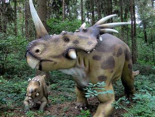 Dinosaurier in einem Dino-Park #19 - Styracosaurus - Urzeit, Dinosaurier, Saurier, groß, ausgestorben, Urzeittier, Urzeittiere, Echse, Evolution, Drache, Biologie, Dino, Fossil, Kind, Junges, Styracosaurus, Kreide, Pflanzenfresser