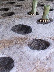 Dinosaurier in einem Dino-Park #28 - Spuren - Urzeit, Dinosaurier, Saurier, groß, ausgestorben, Urzeittier, Urzeittiere, Evolution, Biologie, Dino, Fossil, Spur, Spuren, Trittspuren, Ausgrabung, Münchehagen