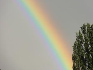 Regenbogen#2 - Regen, Regenbogen, Licht, Optik, Wetterphänomen, Spektralfarben, Kreisbogen, Farbe, Optik, Brechung, Lichtbrechung, Reflexion, Wetter, Farbzerlegung, Wettererscheinung, Physik, Relgion, Gott, Bund, Zeichen