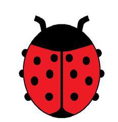 Marienkäfer - Marienkäfer, Käfer, rot, zehn, Anlaut K, Anlaut M, Glück, Symbol