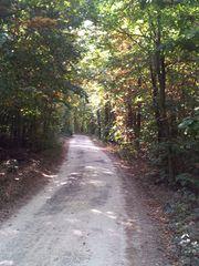 Waldweg - Herbstfarben, Herbst, Blattfärbung, Sonne, Himmel, Herbstlaub, Laub, Blätter, bunt, Schreibanlass, Meditation
