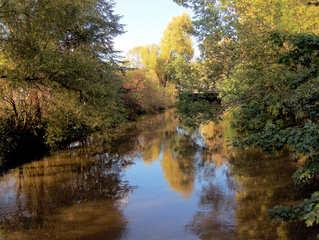 So malt der Herbst - Herbst, Herbststimmung, Herbstfarben, Herbstlaub, Laub, Laubfärbung, Bäume, Blätter, Stimmung, bunt, Spiegelung, Reflexion, Leine, Fluss, Ruhe, Meditation