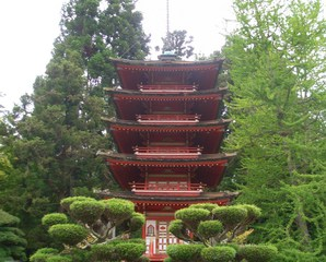 San Francisco - Japanese Tea Garden#1 - Japanischer Teegarten, Japanese Tea Garden, Japanisch, Garten, Teagarten, San Francisco, Golden Gate Park