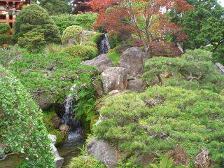 San Francisco - Japanese Tea Garden#4 - Japanischer Teegarten, Japanese Tea Garden, Japanisch, Garten, Teagarten, San Francisco, Golden Gate Park, Teich, Wasserfall