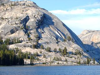 Granitmassiv am Tenaya Lake - Geografie, Yosemite, Nationalpark, Monolith, Granit, Granitfelsen, Extremvegetation, Kiefern, Hochgebirge, Hochland, Massiv, Felsmassiv, Fels, Stein, Gestein, grau, Kalifornien, Sierra Nevada, USA, UNESCO-Weltnaturerbe, Erosion, zerklüftet