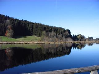 Moor#1 - Moor, Landschaft, Landschaftsform, Hochmoor, Feuchtgebiet, Wasser, Sumpf, Naturschutzgebiet, Spiegelung