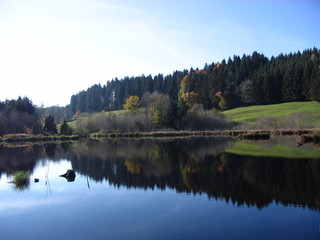 Moor#2 - Moor, Landschaft, Landschaftsform, Hochmoor, Feuchtgebiet, Wasser, Sumpf, Naturschutzgebiet, Spiegelung, Herbst
