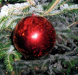 Christbaumkugel - Tannenbaumkugel, Christbaumkugel, Christbaumschmuck, Kugel, Tanne, Dekoration, rund, rot, Glanz, Winter, Weihnachten, Advent, Deko, Weihnachtsdeko