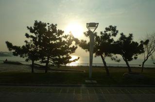 Morgenstimmung - Morgenstimmung, Morgennebel, Schreibanlass, Sonnenlicht, Gegenlicht, Bäume, Nebel, Stimmung, Meditation