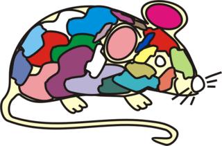 Maus bunt - Maus, Nagetier, Anlaut M, fröhlich, Illustration, Farbe, bunt