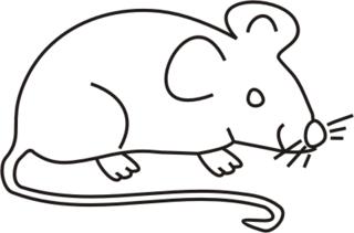 Maus weiß - Maus, Nagetier, Anlaut M, fröhlich, Illustration, Farbe, weiß