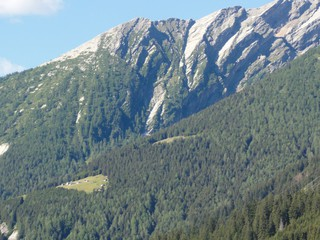 Berghang - Alpen, Schweiz, Gebirge, Berghang, Lichtung, Felsen, Baumgrenze, Landwirtschaft, Wald, Bäume