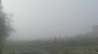 Nebel - Nebel, Luft, Luftfeuchtigkeit, Dunst, Wolke, Tau, Niederschlag, Sicht, Sichtbehinderung, Wasser, diesig, trüb, neblig, Wetter, Wetterphänomen
