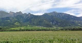 Alpen - Heidiland, Schweiz, Heidi, Berge, Alpen, Schwemmkegel, Gebirge, Roman, Maienfeld, Spyri, Kinderbuch, Klassiker