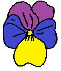 Clipart Stiefmütterchen - Stiefmütterchen, Frühblüher, Frühling, bunt, Illustration, Zeichnung