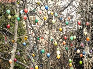 Ostereier am Kirschbaum - Ostern, Eier, schmücken, Traditionen, Brauchtum, Feiertage, frei, Christentum, Auferstehung, Kinder
