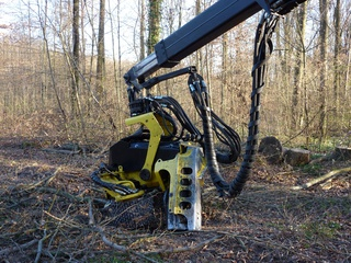 Forstwirtschaft#5 - Zangenschlepper - Zangenschlepper, Forstmaschine, Holz, Holzernte, Holznutzung, Forstwirtschaft, Forstarbeiten, Waldbewirtschaftung, Rohstoffquelle, Wald, Feuerholz, Brennholz