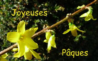 Ostergruß französisch - Ostern, pâques, joyeuses, Grußkarte, Osterfest