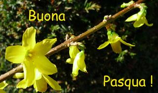 Ostergruß italienisch - Ostern, Grußkarte, buona, pasqua, Osterfest