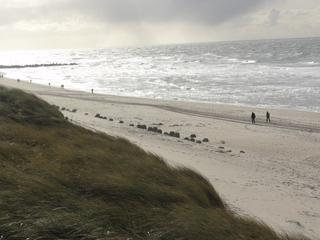 Tetrapoden2 - Tetrapoden, Bauwerk, Strand, Ufer, Küste, Sandstrand, Westerland, Sylt, Nordsee, Küstenschutz, Sturmflut, Landverlust, Düne, Strandhafer, Buhne, Meer, Wellen, Wellenbrecher