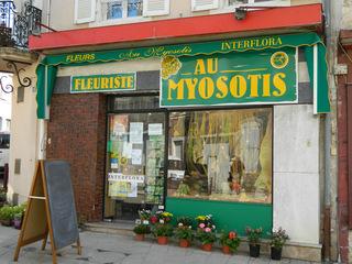 fleuriste - Frankreich, civilisation, Geschäfte, magasin, fleuriste, Blumenladen, myosotis, Vergissmeinnicht