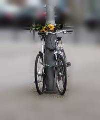 Fahrradhochzeit - Fahrrad, Fahrräder, Verbindung, Metapher, Wortbedeutung, Wortspiel, Installation
