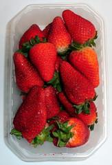 Erdbeeren in der Schale - Erdbeere, Erdbeeren, Schale, ungeputzt, ungewaschen, Obst, Ernährung, ernähren, essen