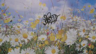Bienchen auf Blumen - Bienchen, Graffiti, Blumen, Reklame, Bumenwiese, Blüten, Graffito