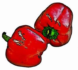 rote Paprika Zeichnung - zwei, rot, Paprika, Gemüse, Frucht