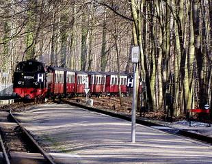 einfahrender Molli - Bäderbahn - Zug, Schmalspurbahn, Bahn, Molli, einfahren, Bahnhof, Gleis, Bahnsteig, Schienen, Eisenbahn, denkmalgeschützt, Waggon, Waggons, Wagon, Wagons