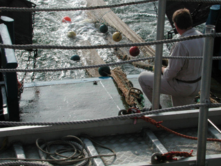 Heck - Fischerei, Schleppnetz, Grundschleppnetz, Fischfang, Fang, Meer, Schiff, Heck, fischen