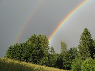 Regenbogen  - Regenbogen, Wetterphänomen, Regen, Spektralfarben, Farbe, Optik, Brechung, Lichtbrechung, Reflexion, Wetter, Farbzerlegung, Wettererscheinung
