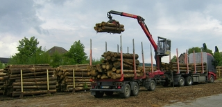 Holz - Holz, Holzwirtschaft, Bäume, LKW, Lastwagen, Eisenbahn, Eisenbahnwaggon, Waggon, Schiene, Rampe, Kran, Bahnhof, Güterbahnhof, Fortswirtschaft, Baumstämme