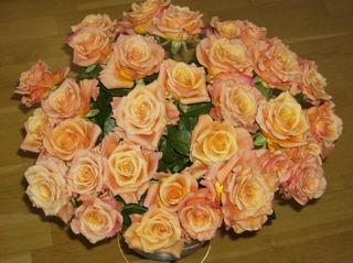 Rosenstrauß - Blume, Rose, Rosengewächs, lachsfarben, dreißig, Blumenstrauß, Strauß, Rosen, Blumen