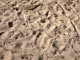 Spurensuche - Spur, Spuren, Spurensuche, spüren, aufspüren, Sand, Strand, Abdruck, Abdrücke, Fußabdruck, Fußabdrücke, Eindrücke, Tierspuren, Impuls, Hintergrund, Kunst, Oberfläche, Struktur, Hintergrund, Wallpaper, Layout