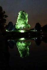 Illuminierter Baum - Illumination, Nacht, nachts, spiegeln, Baum, Spiegelung, grün, Licht, anstrahlen, beleuchten, illuminieren, dunkel, Dunkelheit, Erzählanlass, leuchten, Symmetrie, symmetrisch