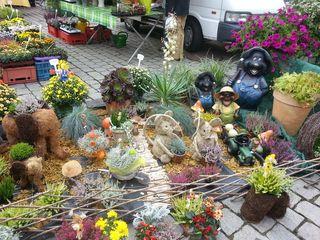 Gärtner-Markttage #4 - Herbst, Dekoration, Verkauf, Markt, Stand, Markstand, Handel