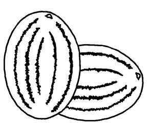 zwei Melonen sw - Melone, Melonen, Anlaut M, Wassermelone, Frucht, Anlaut M, Plural, Mehrzahl, zwei