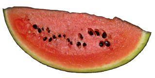 Melonenstück - Melone, Melonen, Stück, Wassermelone, rot, Kürbisgewächs, Frucht, Kern, Kerne, Anlaut M